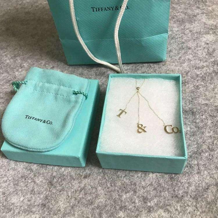 Tiffany & Co.蒂芙尼流苏字母项链