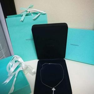 Tiffany & Co. 蒂芙尼鸢尾花形钥匙pt950铂金钻石项链