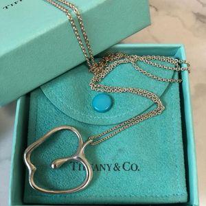 Tiffany & Co. 蒂芙尼镂空苹果项链