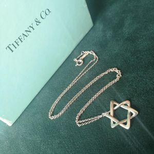 Tiffany & Co. 蒂芙尼XL12613纯银PERETTI92项链