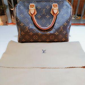 Louis Vuitton 路易·威登老花SP25经典枕头手提包
