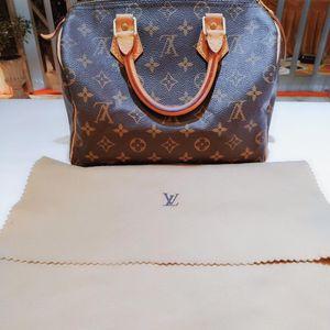 Louis Vuitton 路易·威登老花SP25经典枕头包手提包
