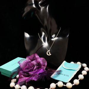 Tiffany & Co. 蒂芙尼限量款浮雕月亮神吊坠纯银项链