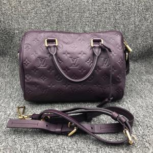 Louis Vuitton Speedy25女士手提包