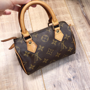 Louis Vuitton 路易威登女士speedymini手提包
