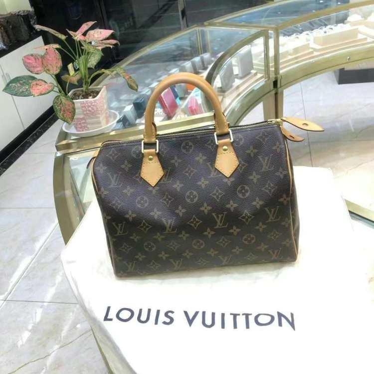 Louis Vuitton路易威登路易·威登女士手提包LV手提包
